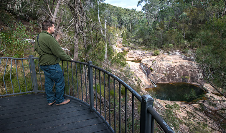 Biamanga National Park - Southport Accommodation