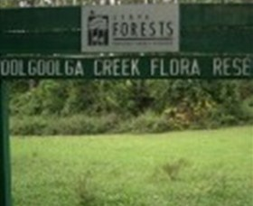 Woolgoolga Creek Flora Reserve - Southport Accommodation