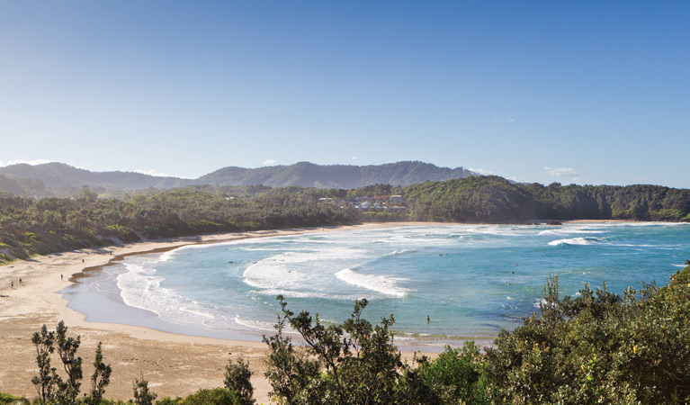 Coffs Coast Regional Park - Southport Accommodation