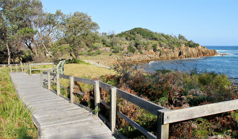Mimosa Rocks walking track - Southport Accommodation