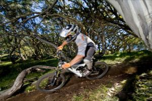 All Terrain Cycles - Southport Accommodation