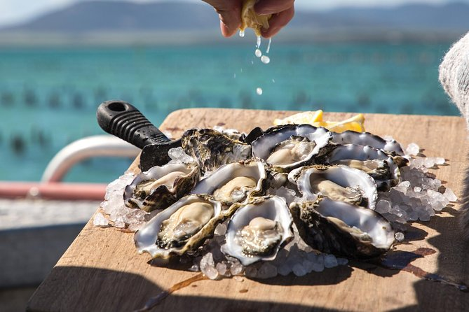 Pure Coffin Bay Oysters - Short and Sweet Oyster Farm Tour