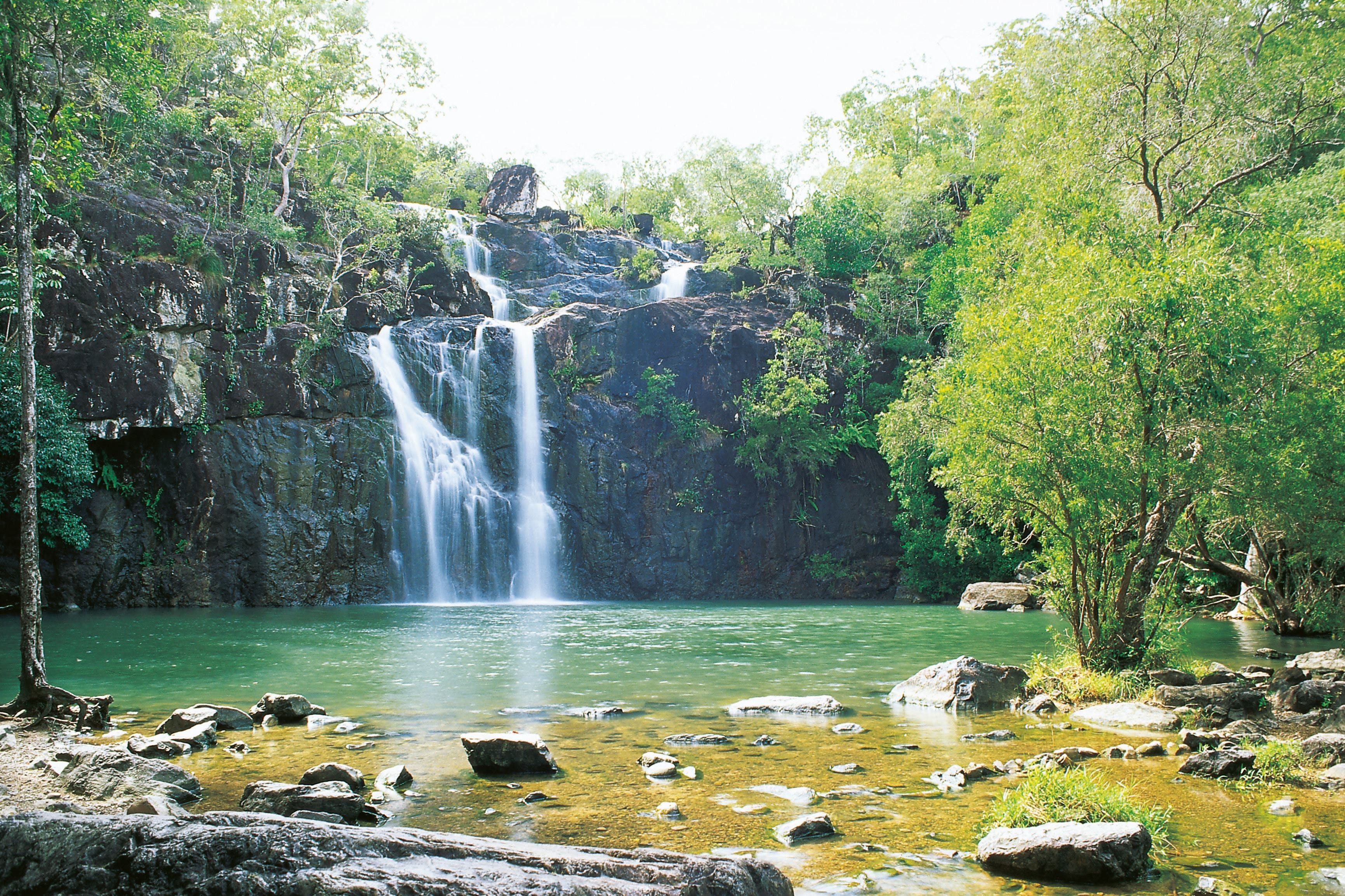 Airlie Beach to Cedar Creek Falls - Southport Accommodation