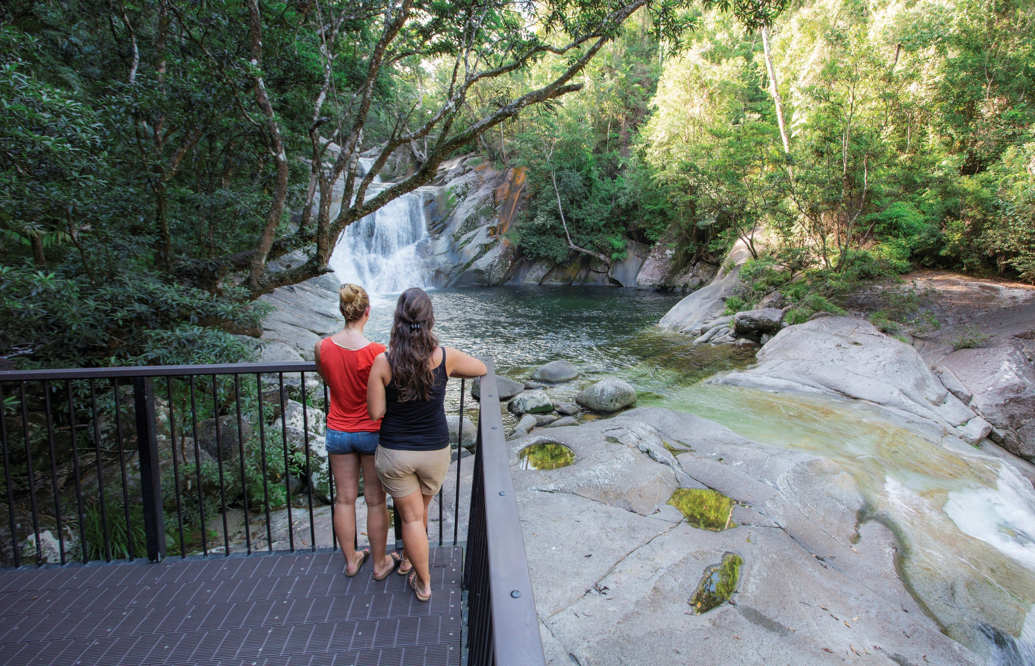 Josephine Falls walking track Wooroonooran National Park - Southport Accommodation