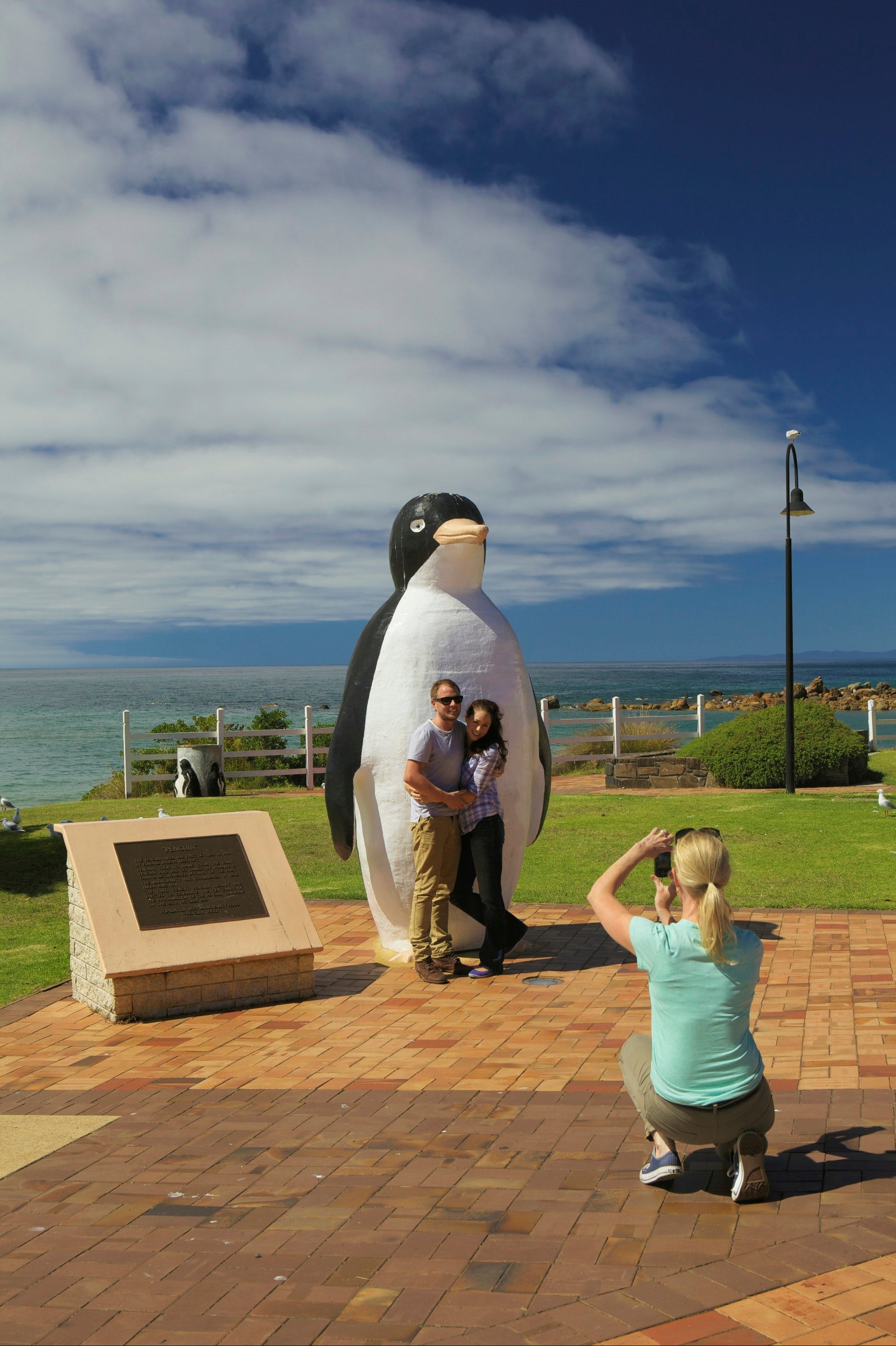 Penguin - Southport Accommodation