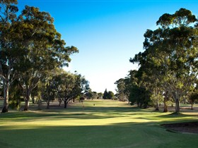 Loxton Golf Club - Southport Accommodation