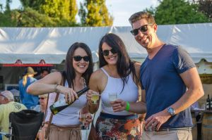 Stanthorpe Apple and Grape Harvest Festival - Southport Accommodation