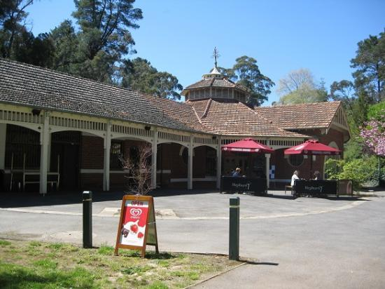Hepburn Pavilion Cafe - Southport Accommodation
