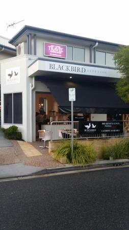 Blackbird Espresso - Southport Accommodation