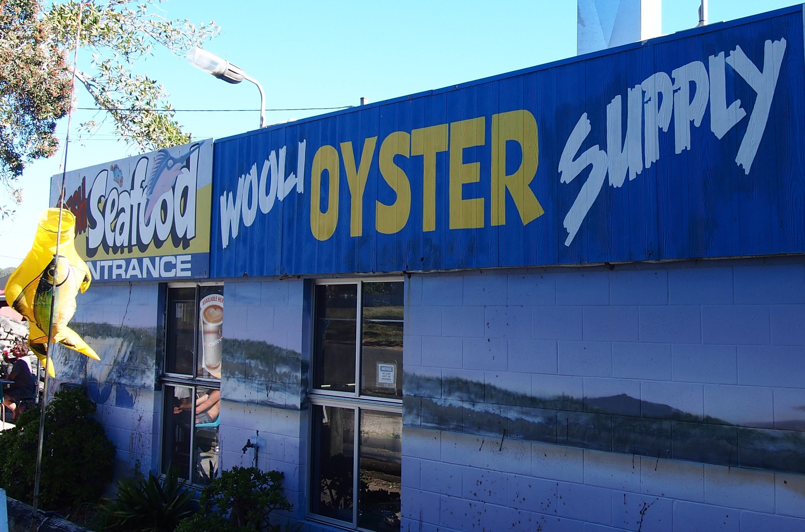 Wooli Oyster Supply and Seafood Co-op - Southport Accommodation
