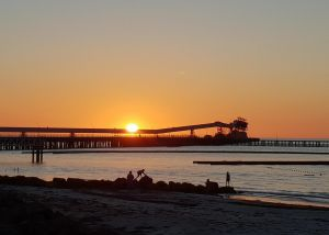 Wallaroo Beachfront Tourist Park - Southport Accommodation