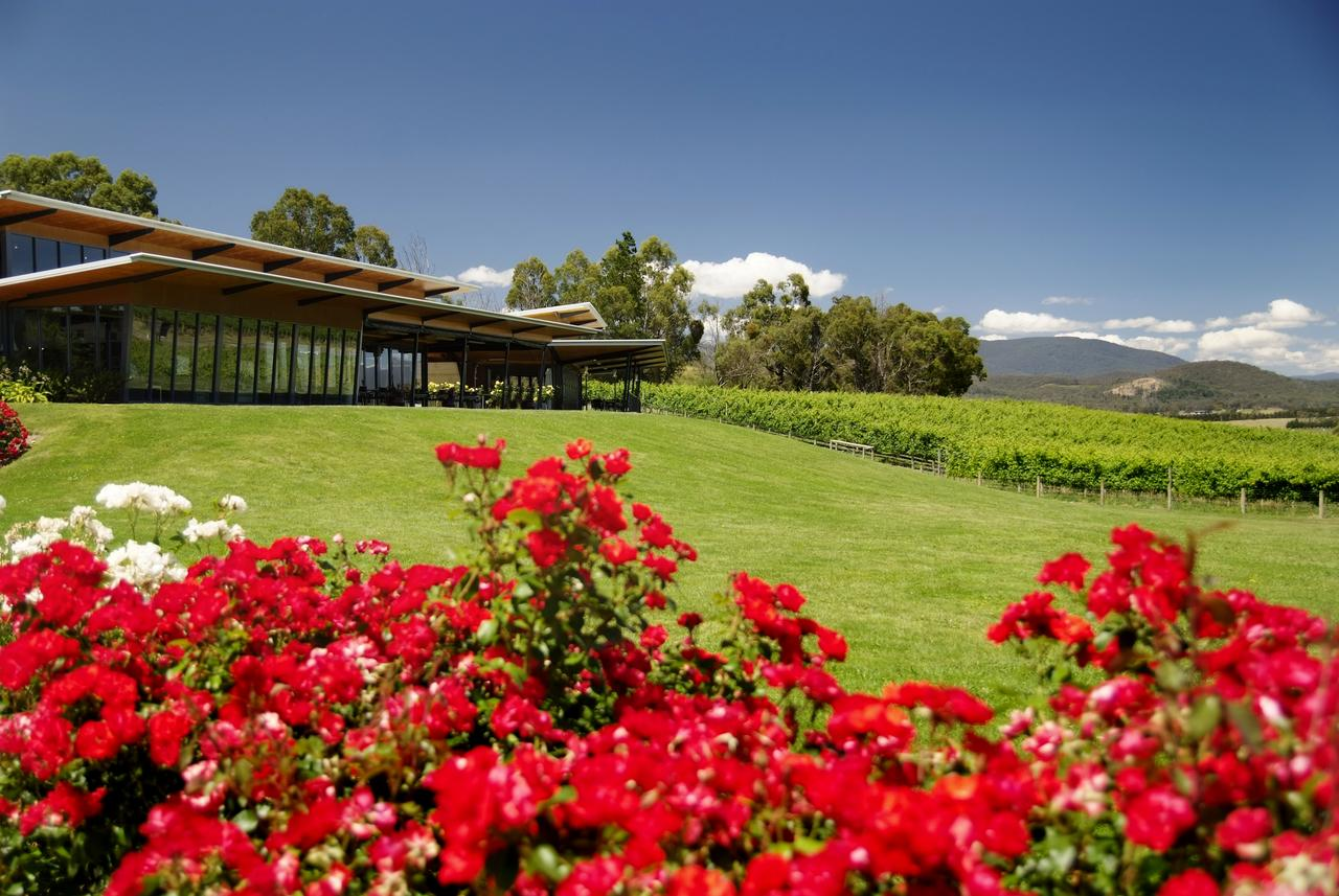 Balgownie Estate Vineyard Resort  Spa - Southport Accommodation