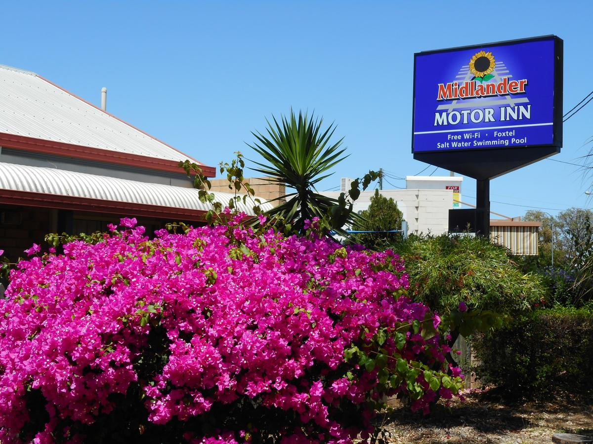Midlander Motor Inn - Southport Accommodation